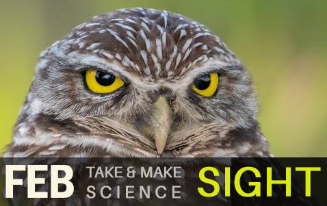 Take and Make Science Sight