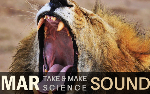 Take and Make Science Sound