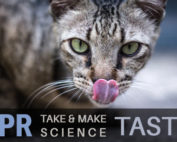 Take and Make Science - Taste