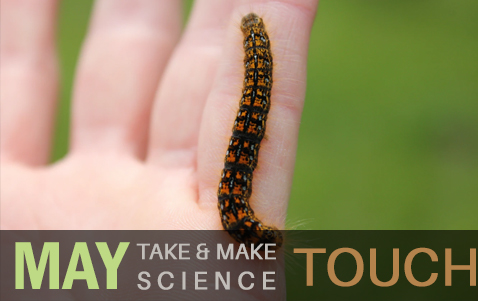 Take and Make Science - Touch